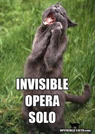 Invisible Cat Memes - kitty opera check out heart s performing arts an in home music