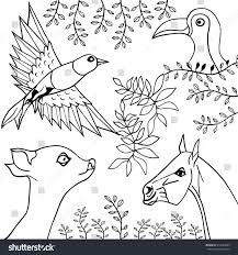 hand draw blackwhite collection animals birds stock vector