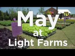 Light Farms Celina 19 Best Plano Images On Pinterest Dallas Texas Plano Texas And