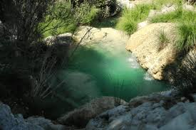 Backyard Swimming Ponds - natural pools or swimming ponds u2022 nifty homestead
