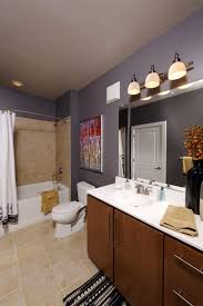 apartment bathroom decor ideas apartment bathrooms home decor ryanmathates us