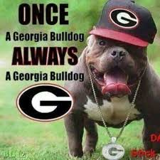 501 best ga bulldogs i love my dawgs images on pinterest