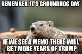 Gopher Meme - memes history infographics