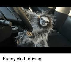 Best Sloth Memes - funny sloth driving driving meme on me me