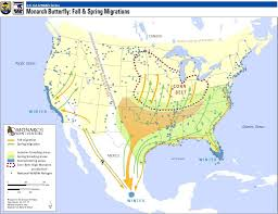 Map Of Mexico And South America by Monarchs North America U0027s Butterfly National Wildlife Refuge System
