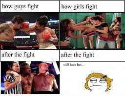 Guys Meme - difference between guys and girls fight funny meme image