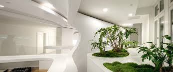 bureau d 騁udes fluides architecture bureau moderne lignes fluides blanc mousse plante