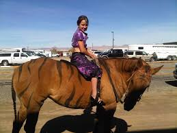 halloween horse 4 h horse costume class ideas discuss costume class at the