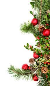 holiday foliage border issn atlanta u0026 spa