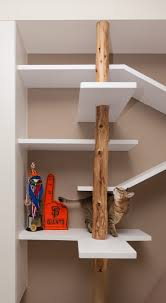 the custom shelving in this home keeps the cat happy contemporist