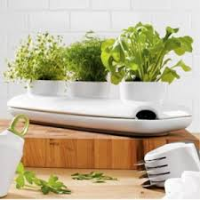 Indoor Herb Garden Light Easy Tips To Begin An Indoor Herb Garden How To Begin An Indoor