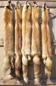 Deer Hide Tanning Companies Tanned Hides And Furs