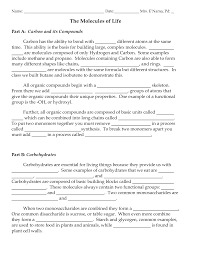 protein synthesis worksheet worksheets