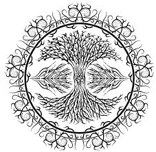tree of tribal bw drawings drawings illustration