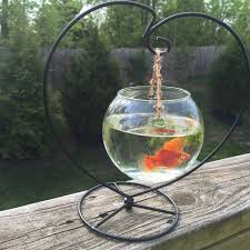 fish bowl etsy hanging mounted glass terrarium globe container