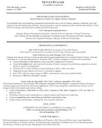 Sample Resume Sales Manager by Sales Manager Resume Doc Resume For Your Job Application