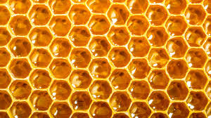can a smart beehive network of open source hives help stop the bee apo