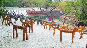 soon rock garden to be illuminated at night the indian express
