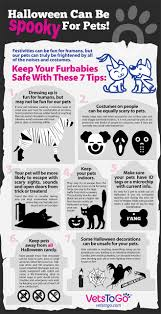 fake cobwebs halloween halloween pet safety tips mobile vet u0026 housecall services in