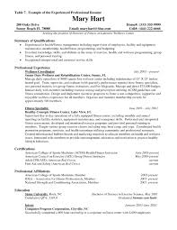 resume for experienced professionals sample luxury professional it
