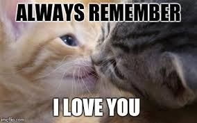 Cute Love Memes For Her - cute love memes for him and for her romantic memes and memes