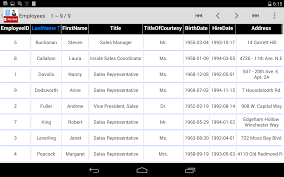 accdb mdb database manager viewer for ms access android apps