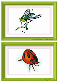 insects free esl efl worksheets made by teachers for teachers