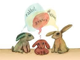 rabbit rabbit 46 best rabbit rabbit rabbit images on bunnies