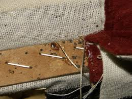 How To Make A Bed Bug Trap How To Find Bed Bugs Step By Step Inspection Guide