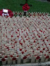 Flowers Of The Month List - remembrance day wikipedia