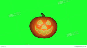 halloween pumpkin winking animation green screen stock animation