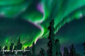 alaska aurora lights tour fairbanks aurora tours northern lights tours in alaska fairbanks