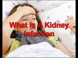 what is a kidney infection symptoms causes treatment signs