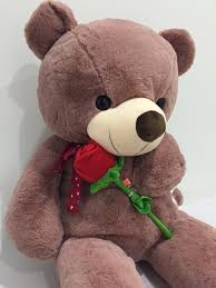 valentines day teddy s day teddy the gift for him