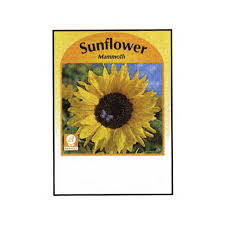 sunflower seed packets large sunflower seed packets imprinted with logo 4allpromos