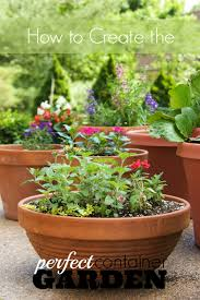 Vegetables For Container Gardening by How To Create The Perfect Container Garden Tipsaholic