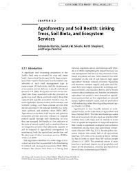 agroforestry and soil health linking trees soil biota and