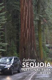 the 25 best sequoia car ideas on pinterest vw incentives