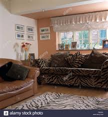 Animal Print Furniture by Animal Print Upholstery Stock Photos U0026 Animal Print Upholstery