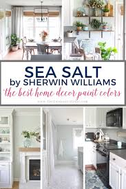 what paint color goes best with gray kitchen cabinets best home decor paint colors sherwin williams sea salt
