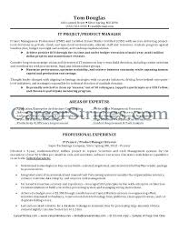 it manager resume exles resume it manager it director resume resume project manager exle