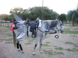 Halloween Costumes Horse 36 Annual Bootritional Halloween Costume Contest Ideas Images