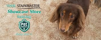 Great Floors Seattle Hours by Fantastic Floors Kirkland Flooring Experts Carpet Hardwood