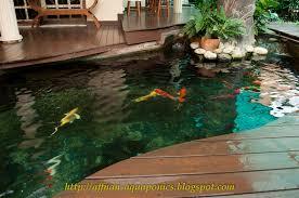 affnan s aquaponics aquaponics malaysia en ahmad hayan radzi setup
