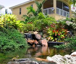 Landscaping Company In Miami by Exotic Landscape Design Landscape Installation Custom Waterfalls
