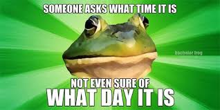 Bachelor Frog Meme - bachelor frog meme 11