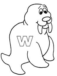 coloring page for walrus walrus coloring pages walrus coloring sheet realistic walrus