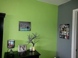 31 best color me confused images on pinterest apple green