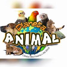 Famosos Planeta Animal PetShop - 390 fotos - 16 avaliações - Pet Shop - Av  #OV32