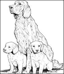 coloring pages u0026 book on